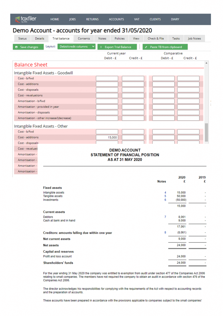 Demo account for tax filing